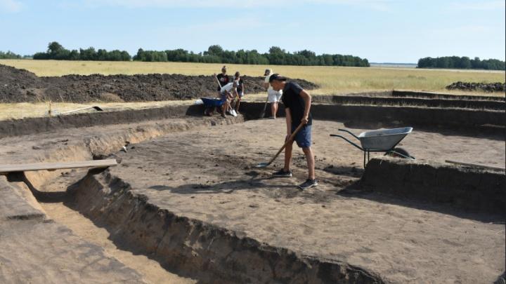 Под Новосибирском нашли древние курганы с захоронениями скифских времён