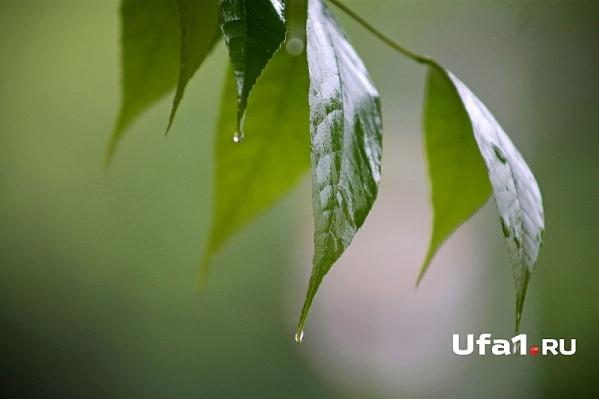 В Уфе в этот день будет пасмурно и дождливо