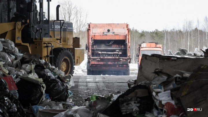 Компании, оставшиеся без договора с регоператором — о близости «мусорного коллапса» в Поморье