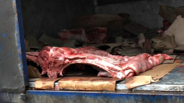 В Самарской области более полутонны говядины отправили на утилизацию из-за отсутствия печати