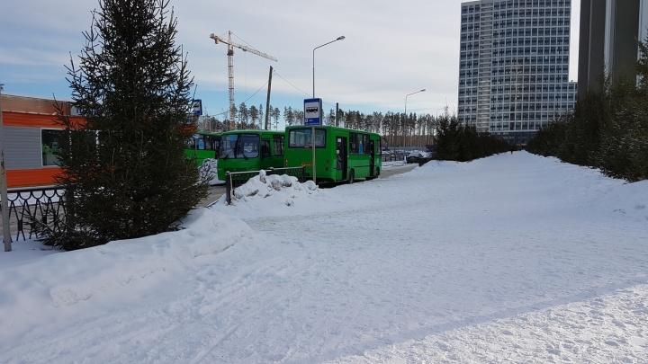 Жители микрорайона Светлого собрали подписи с просьбой добавить автобусных маршрутов