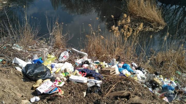Побледнело и стало свалкой: «розовое» озеро в Волгограде продолжает разливаться и обрастать мусором