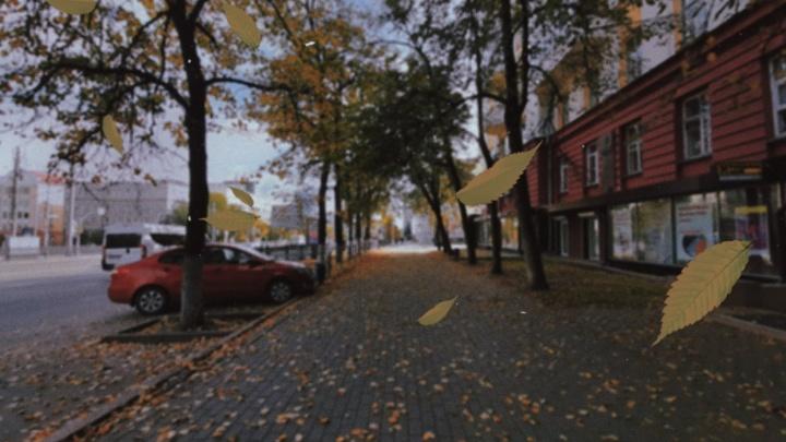 «Сегодня листья запретили, завтра снег»: Александр Олексюк — об осеннем настроении в большом городе