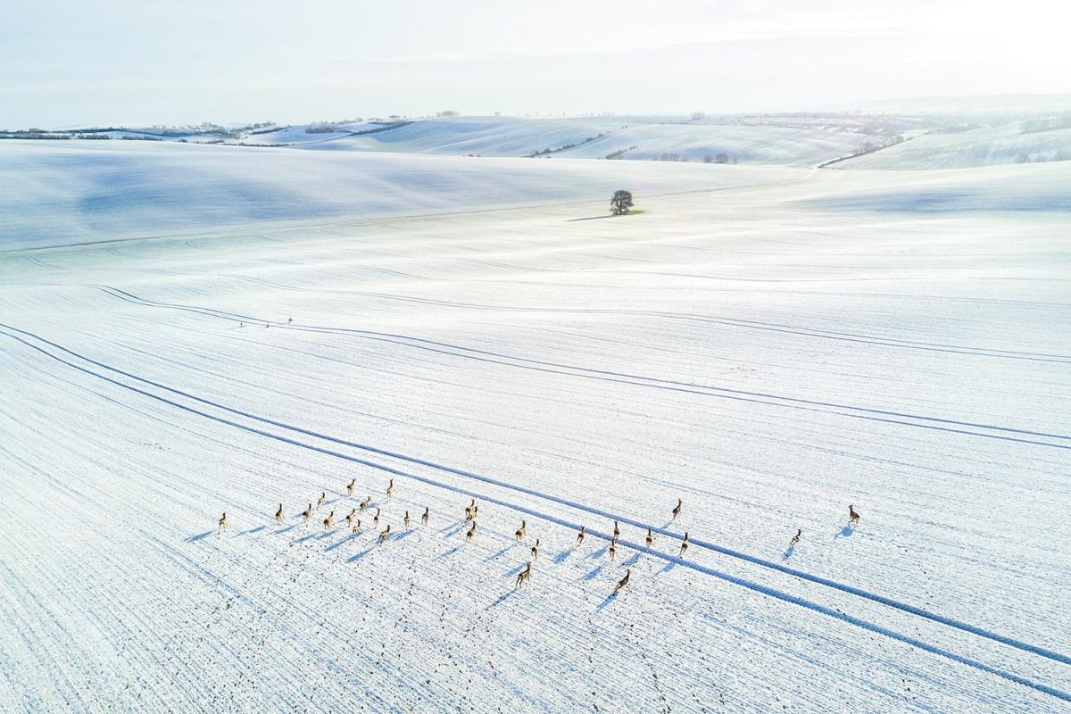Зимняя сказка в Моравии — регионе Чехии