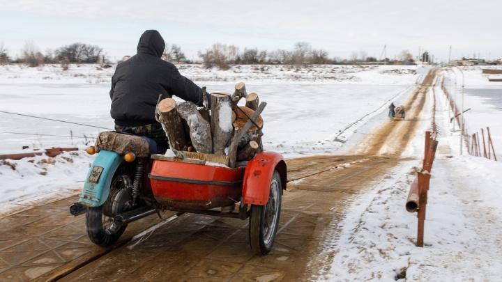 «Незнание хвороста не освобождает»: депутаты защитили валежник от жителей Волгограда