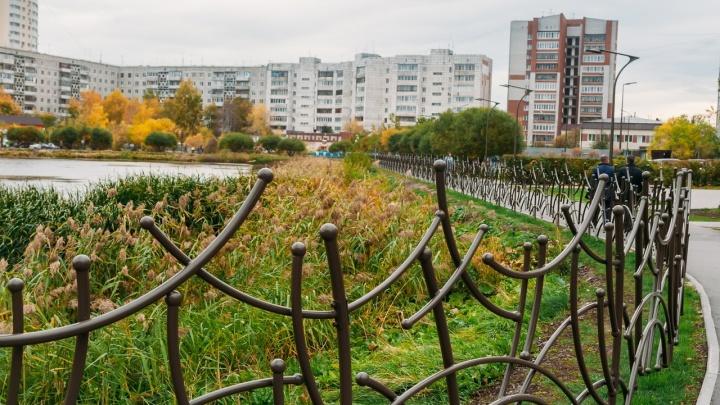 На установку забора вокруг пруда Южный власти потратили почти 4,5 миллиона рублей