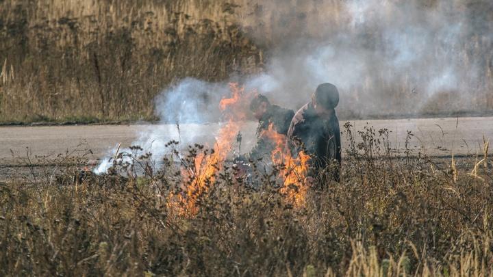 Жителям Самарской области запретили сжигать мусор на дачах