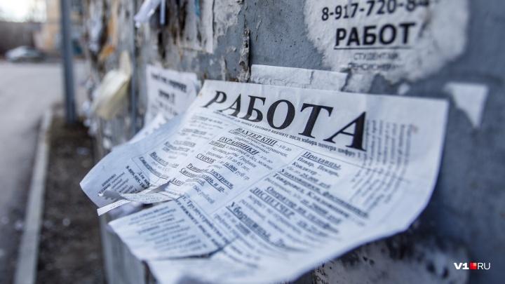 410 человек в день: администрация Волгоградской области интернетом борется с безработицей