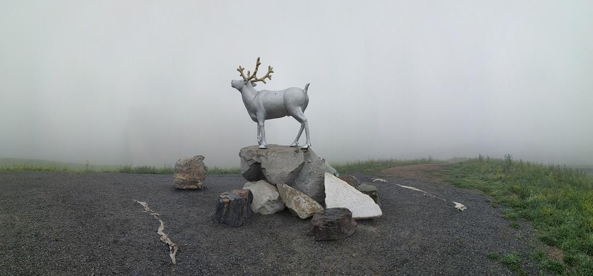 Олень в Преображенском парке, Академический