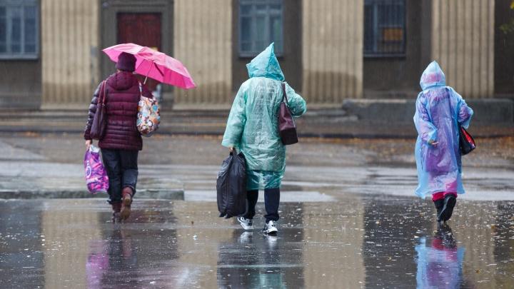 В Волгоградскую области придут грозы, дожди и шквальный ветер