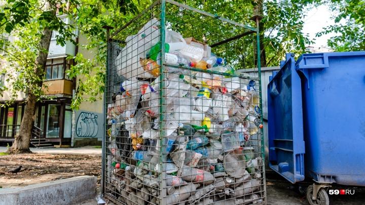В Перми разработали приложение, которое определяет места раздельного сбора мусора