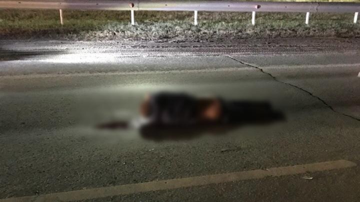«Он внезапно выбежал на дорогу»: под Самарой водитель «Приоры» насмерть сбил пешехода