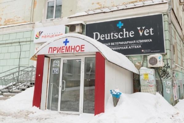 Клиника в жилом доме на Екатерининской находится уже более 10 лет