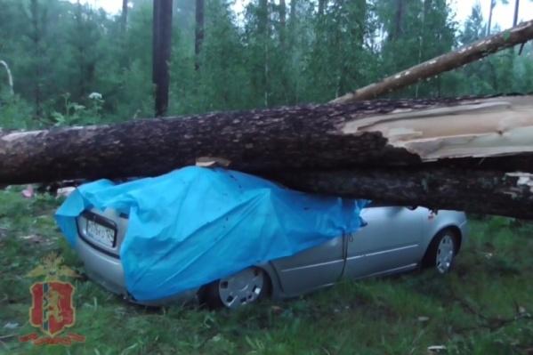 23 июня на озере Боровое в Абанском районе бушующий шторм застал врасплох отдыхающих