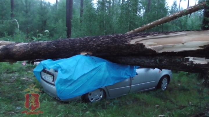 Жуткий шторм обрушился на популярное место отдыха красноярцев: кадры операции спасения