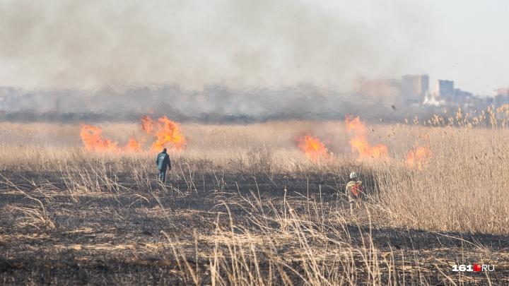 Чрезвычайную пожароопасность ожидают с 4 по 6 июля в Ростовской области