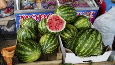 Как выбрать хороший арбуз в Краснодаре