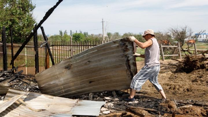«Не двигаемся с места»: сотрудники сгоревшей в Волжском конюшни жалуются на расследование дела