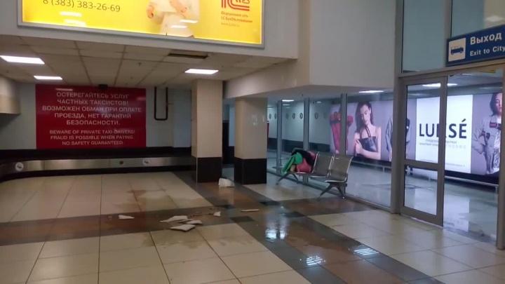 «Плитка начала падать»: в аэропорту Толмачёво протёк потолок
