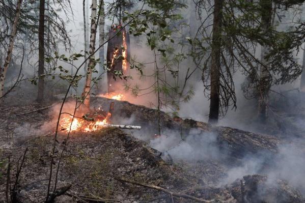Пожары в Богучанском районе