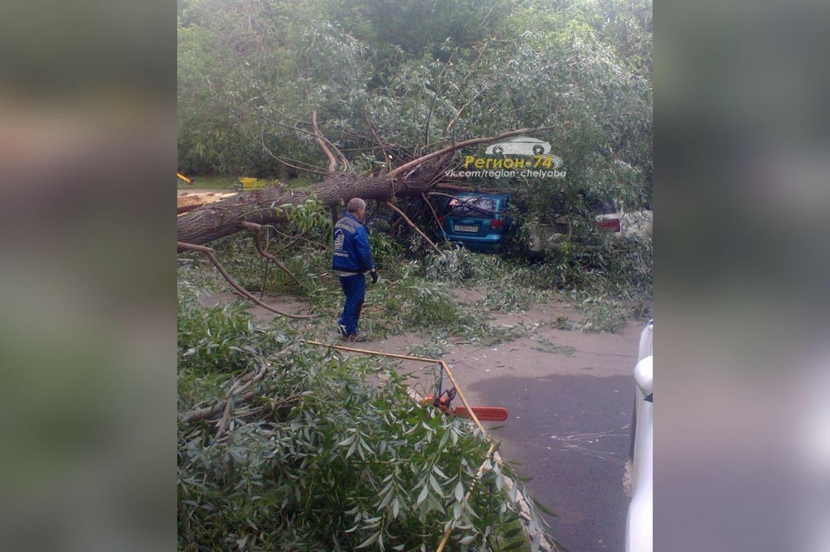 Дерево упало во дворе дома № 21 по улице Каслинской
