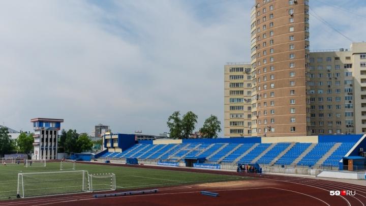 За мошенничество при реконструкции «Динамо»экс-замминистра спорта могут приговорить к 3,5 года