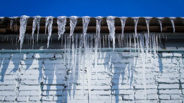 Снежно и солнечно: чем порадует ростовчан погода в выходные