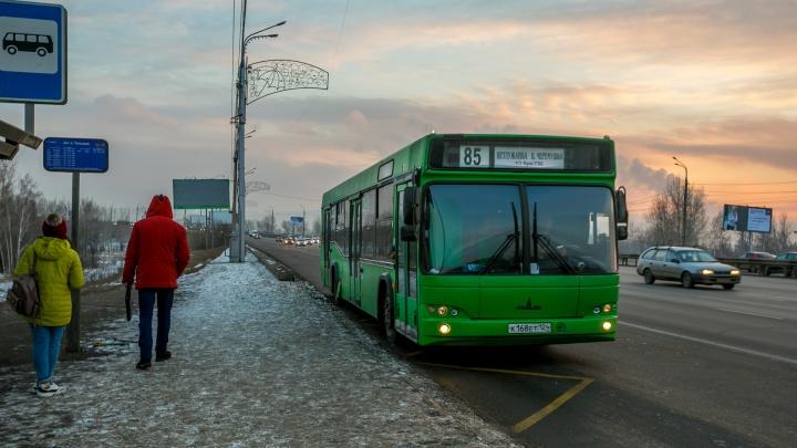 В мэрии рассказали, какие автобусы сошли с маршрута из-за морозов