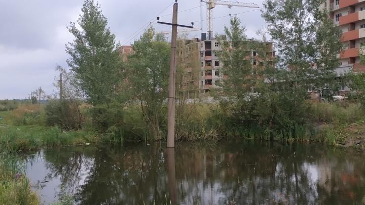 «Напряжение — 10 тысяч вольт»: пруд в Деме оказался смертельно опасным