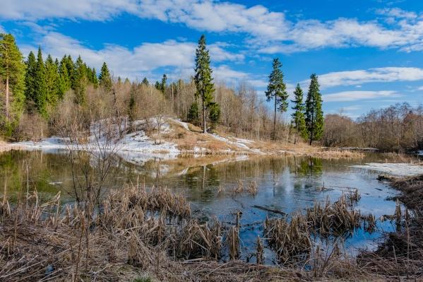 Озеро находится на правом берегу Камы в районе Средней Курьи