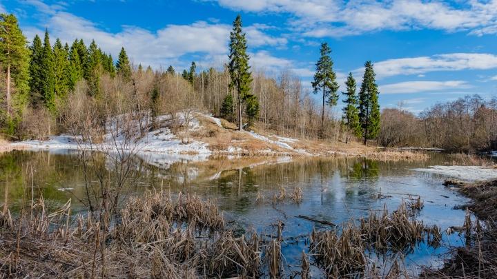 В Перми ребенок нашел в озере тело мужчины