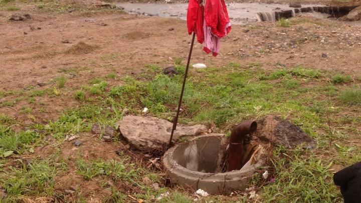 Новосибирец прыгнул в канализационный люк и спас собаку