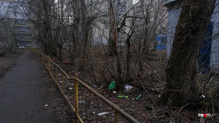 «Самая фишка в контрасте»: журналист из Ярославля показала непристойный центр города в неглиже