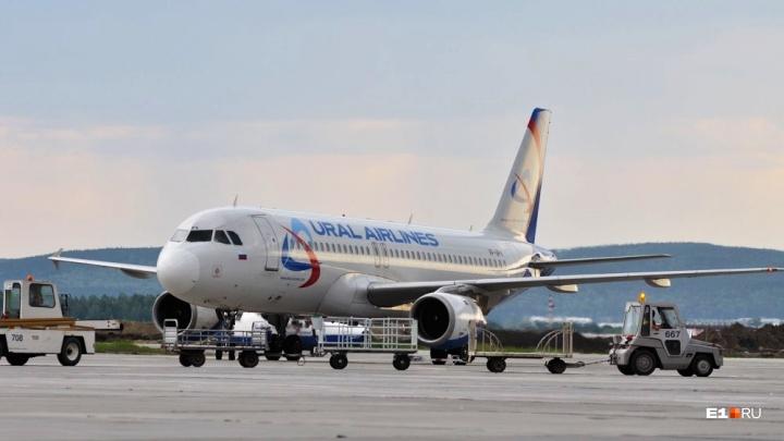 В Кольцово запустят прямые рейсы из Екатеринбурга на родину «Октоберфеста»