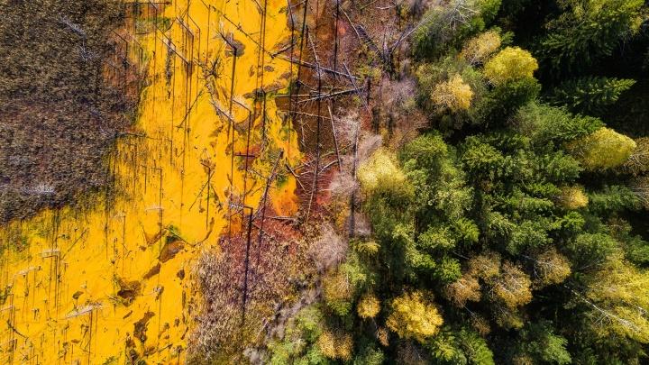 «Экологическая катастрофа»: уральский фотограф снял затопленный кислотный рудник под Нижним Тагилом