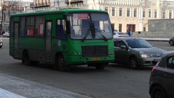 Убыточный маршрут №53 из Солнечного в центр решили спасти, увеличив на нем количество автобусов