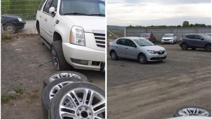 Сворованные колеса нашли на пустыре: неожиданная развязка истории с кражей на парковке у Кольцово