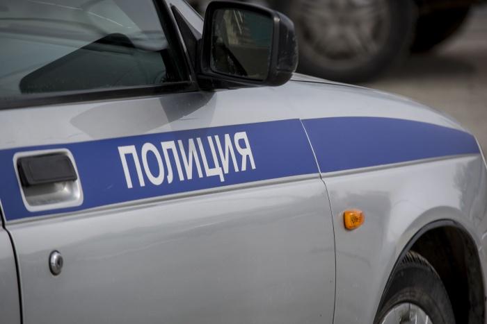 Полиция проводит доследственную проверку