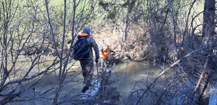Мужчина потерялся в лесу в середине мая и был найден в реке спустя две недели