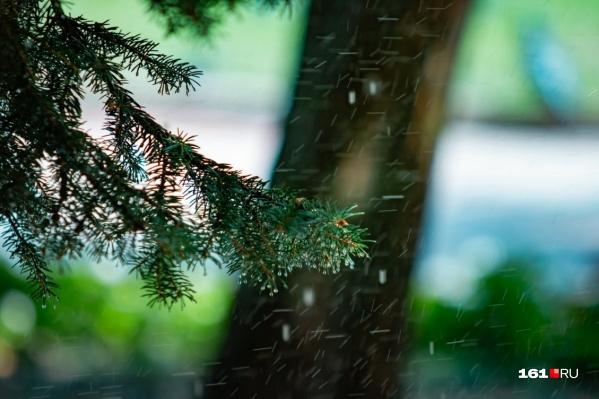 Неделя в донской столице будет дождливой