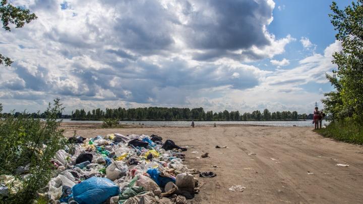 В мэрии назначили ответственного за экологию и борьбу с пылью