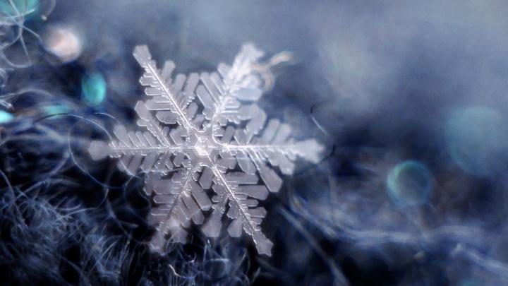 Зимняя красота: екатеринбурженка фотографирует снежинки, вместо вспышки используя телефон