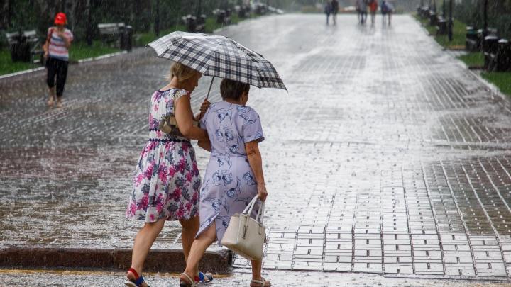 На выходных Волгоградскую область зальет мощными ливнями и продует шквалистым ветром до 25 м/с
