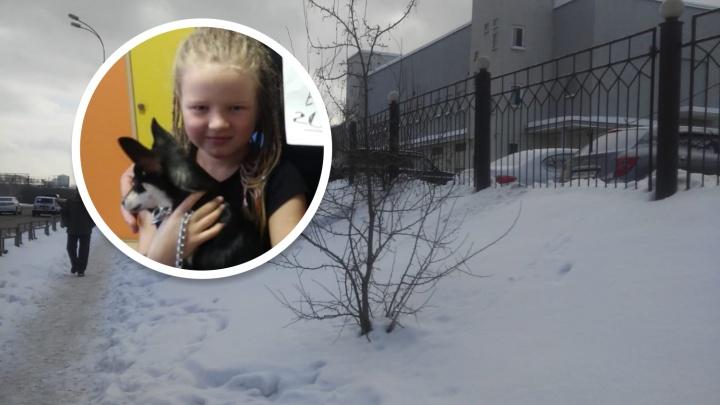 На Бажова псы загрызли маленькую собачку и искусали её семилетнюю хозяйку