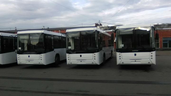 В Омск впервые за пять лет купили новые большие автобусы