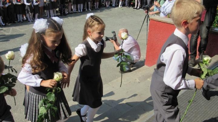 Каждой школе по «зебре»: до 1 сентября в Курганской области для учеников должны сделать переходы
