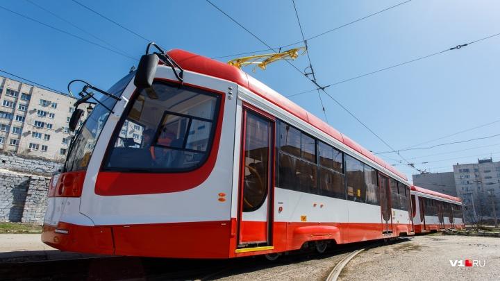 Волгоградцам 1 сентября дадут порулить на выставке общественного транспорта