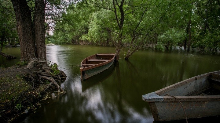 В Новосибирской области 11-летний мальчик утонул на рыбалке с дедушкой