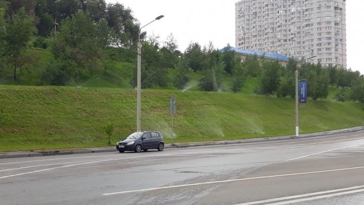 «А вы пальцем потыкайте»: вдоль Нулевой Продольной Волгограда после ливня поливают газон
