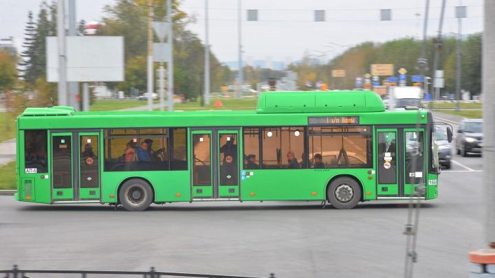 Жителей Екатеринбурга после праздничного салюта 9 Мая развезут по районам на автобусах